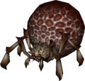 Armogohma Augenspinne.png